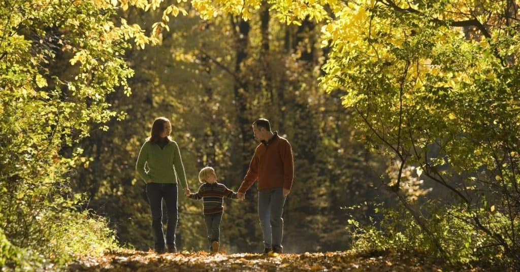 Muddy walk through the woods - Christmas Days Out for Kids - Open for Christmas