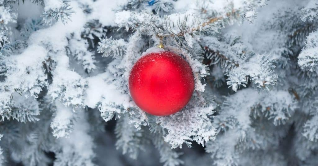 Red bauble ornament on a white flocked Christmas tree - Open for Christmas