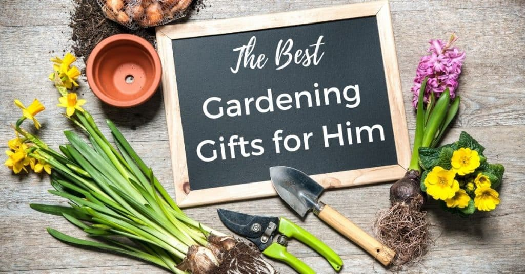 Top Gardening Gifts for Him - Open for Christmas